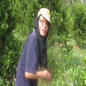 Yong Han